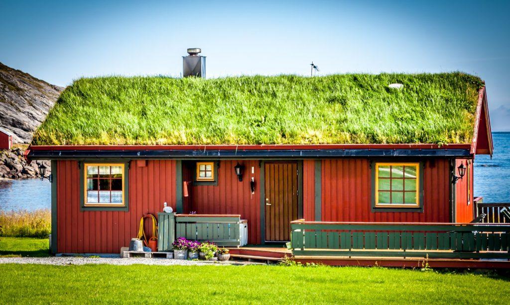 Grønt tag på sommerhuset